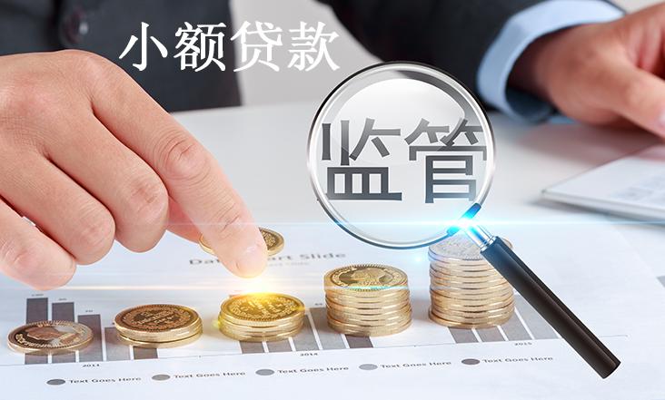 小额贷款公司监管-协贷网.png